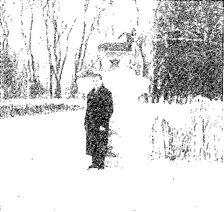 Bortkuszki. Fragment parku, przed 1939 r.